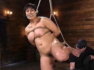 Mia Little Is Harassed To Tears While In Rigid Tying